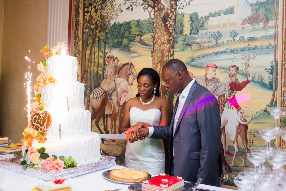 Photographe mariage 77 Découpe du gâteau par les mariés